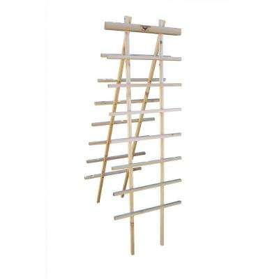 24 in. W x 72 in. H Wood Ladder Trellis Kit