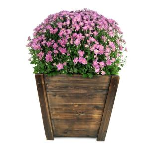 16 in. Dark Flame Wood Tapered Planter