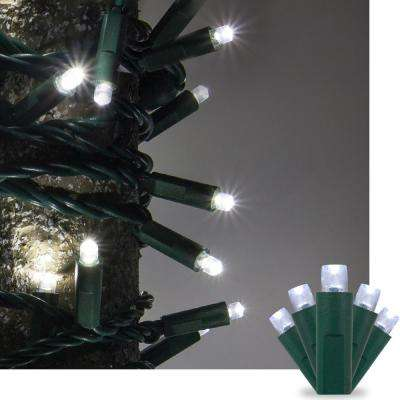 17 ft. 50-Light Cool White 5 mm LED Mini Light Set