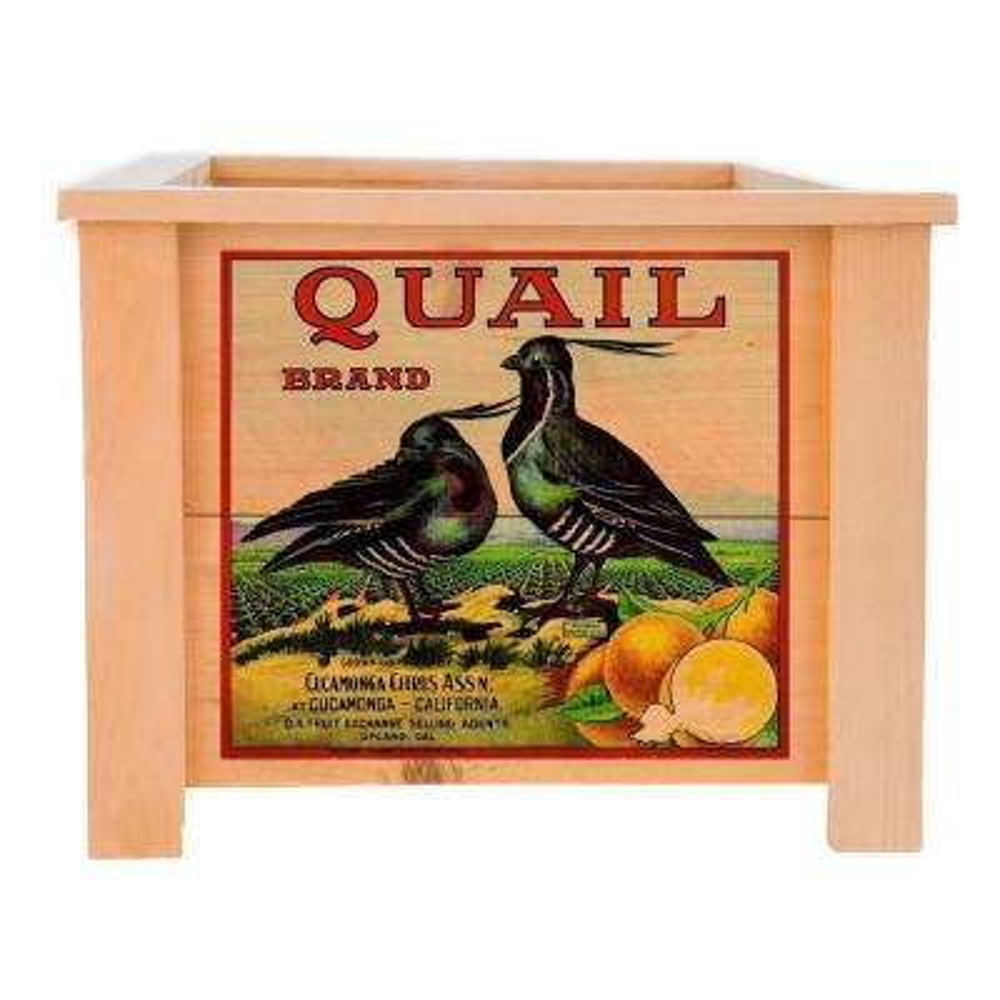 19 in. x 19 in. Deluxe Cedar Planter Box with Quail Art