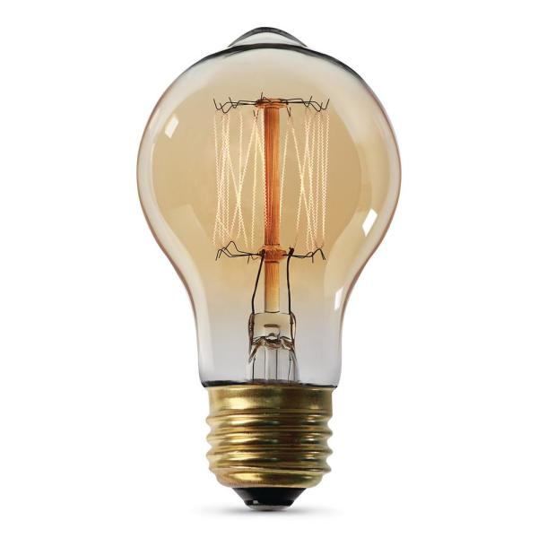 60-Watt AT19 Dimmable Incandescent Amber Glass Vintage Edison Light Bulb with Cage Filament Soft White