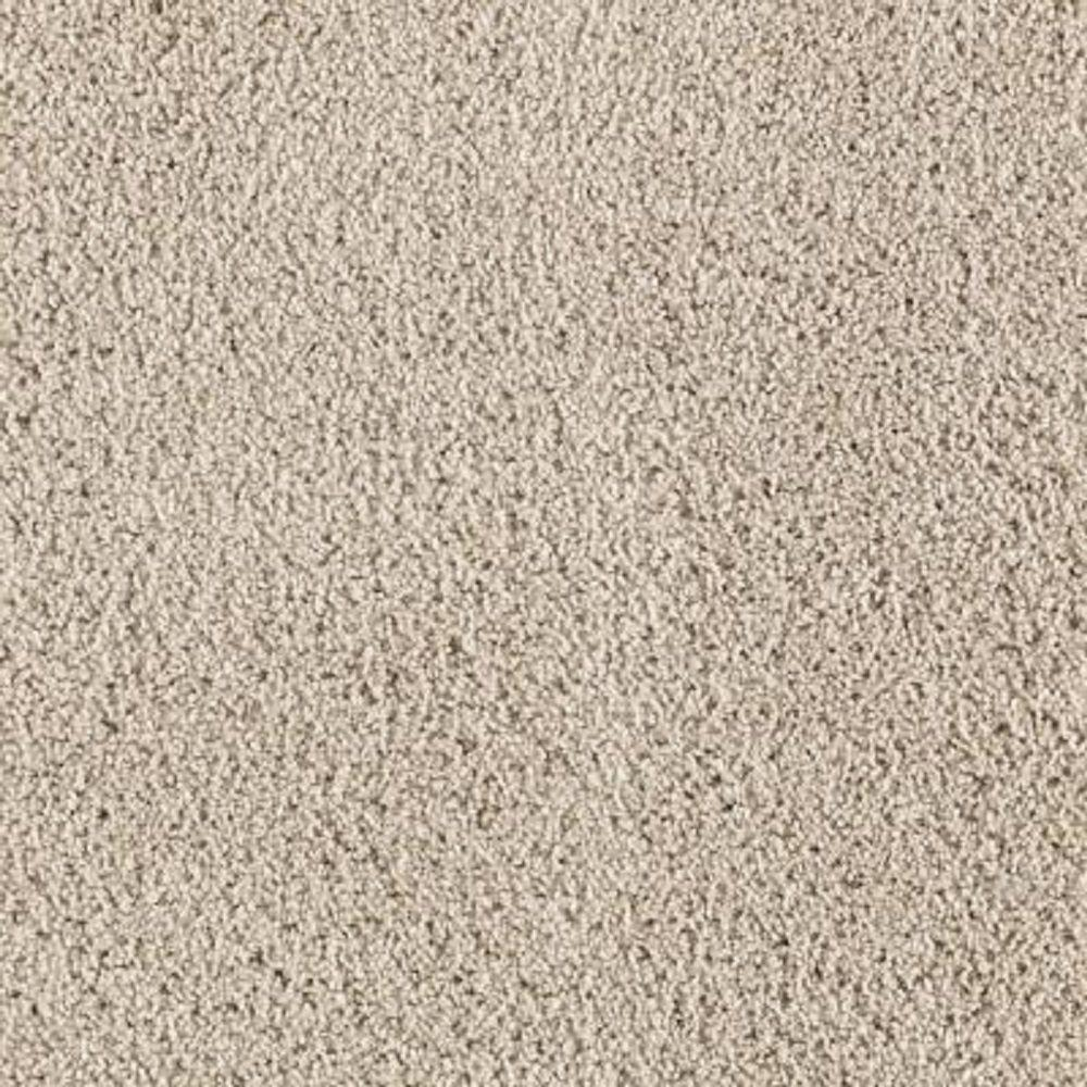 Lifeproof Carpet Sample Ballet Ribbon Color Shell Tint