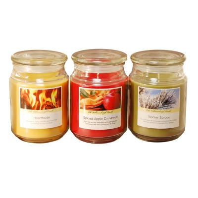 Scented Candles Holiday Collection in 18 oz. Glass Jars (3 Count)