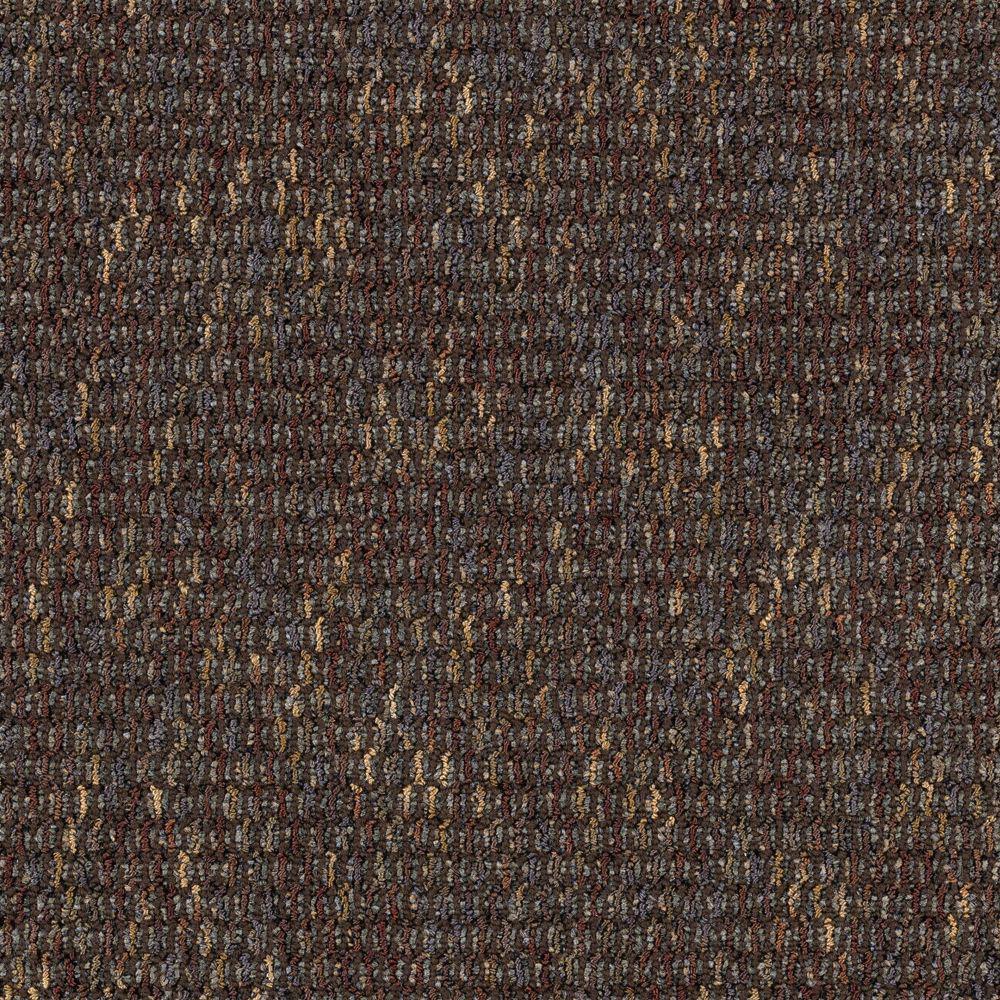 Social Network IV - Color Coffee Bean Loop 12 ft. Carpet