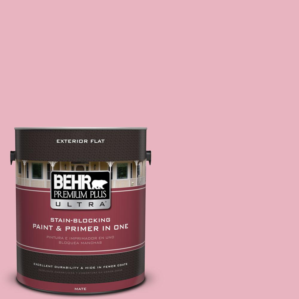 1-gal. #110C-2 Colonial Rose Flat Exterior Paint