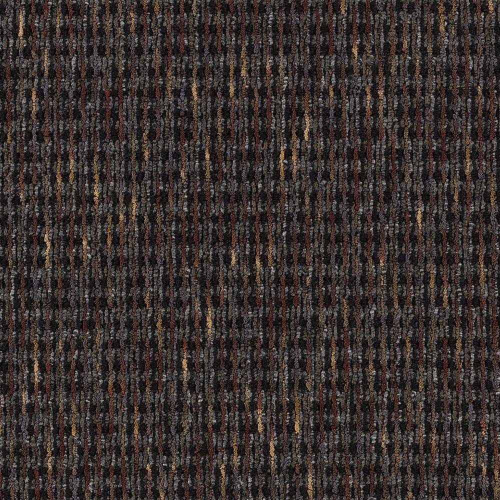Social Network III - Color Charcoal Loop 12 ft. Carpet