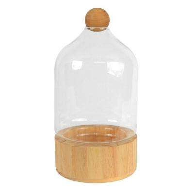 Dome 6 in. x 10 in. Glass and Natural Wood Terrarium