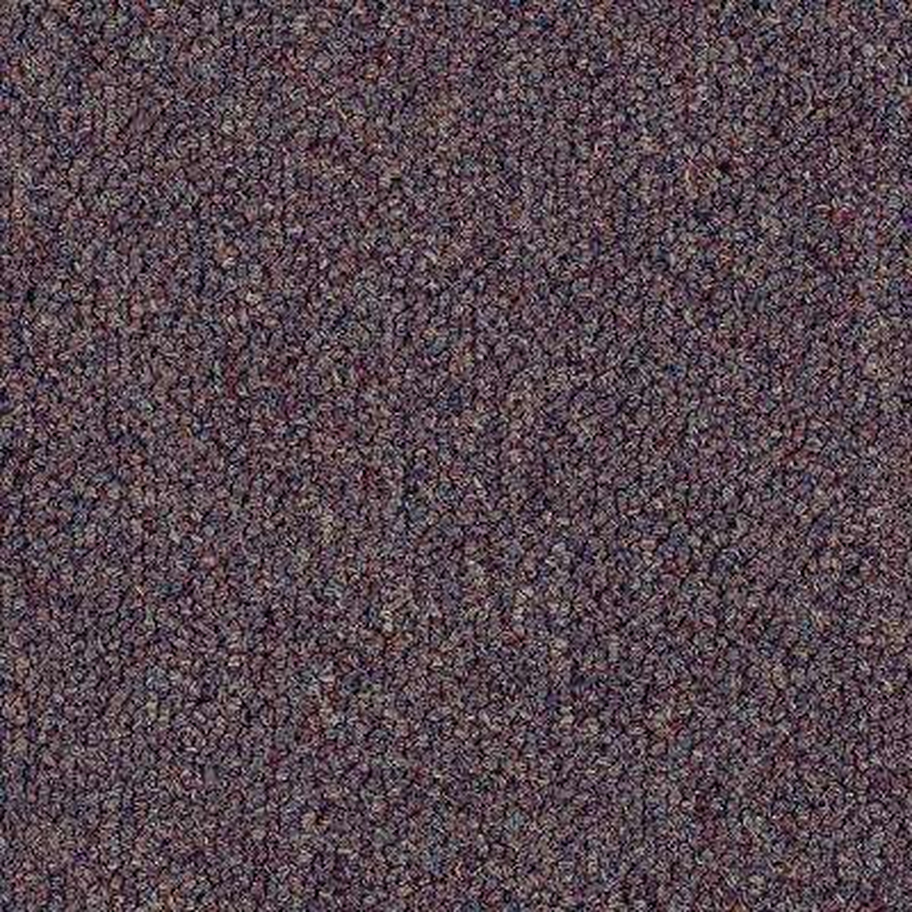 Carpet Sample - Top Rail 20 - Color Framboise Loop 8 in. x 8 in.