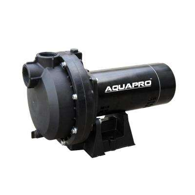 3/4 HP Sprinkler Pump with Automatic Selector Switch