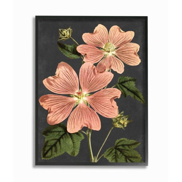 Stupell Industries Botanical Drawing Pink Flower On Black Design By Lettered And Lined Framed Abstract Wall Art 30 In X 24 In Fap 165 Fr 24x30 The Home Depot