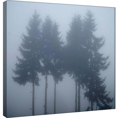 15 in. x 15 in. ''Foggy Morning 3'' Printed Canvas Wall Art