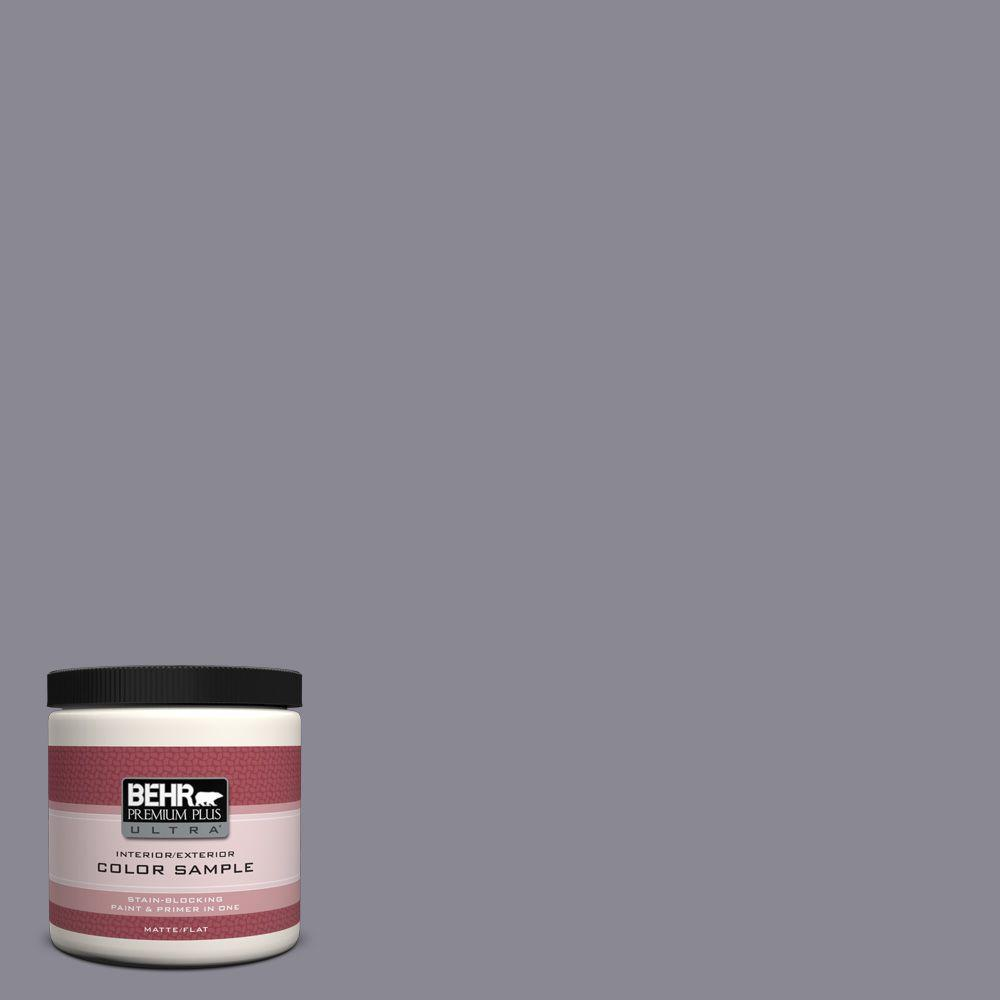BEHR Premium Plus Ultra 8 oz. #PPU16-15 Gray Heather Interior/Exterior Paint Sample