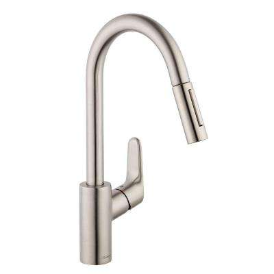 Focus Single-Handle Pull-Down Sprayer Kitchen Faucet in Steel Optik