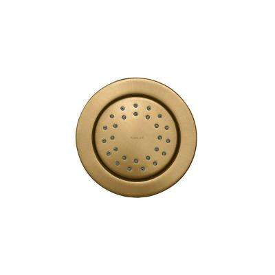 WaterTile 4.875 in. 1-Spray Round 27-Nozzle Body Sprayer in Vibrant Brushed Bronze