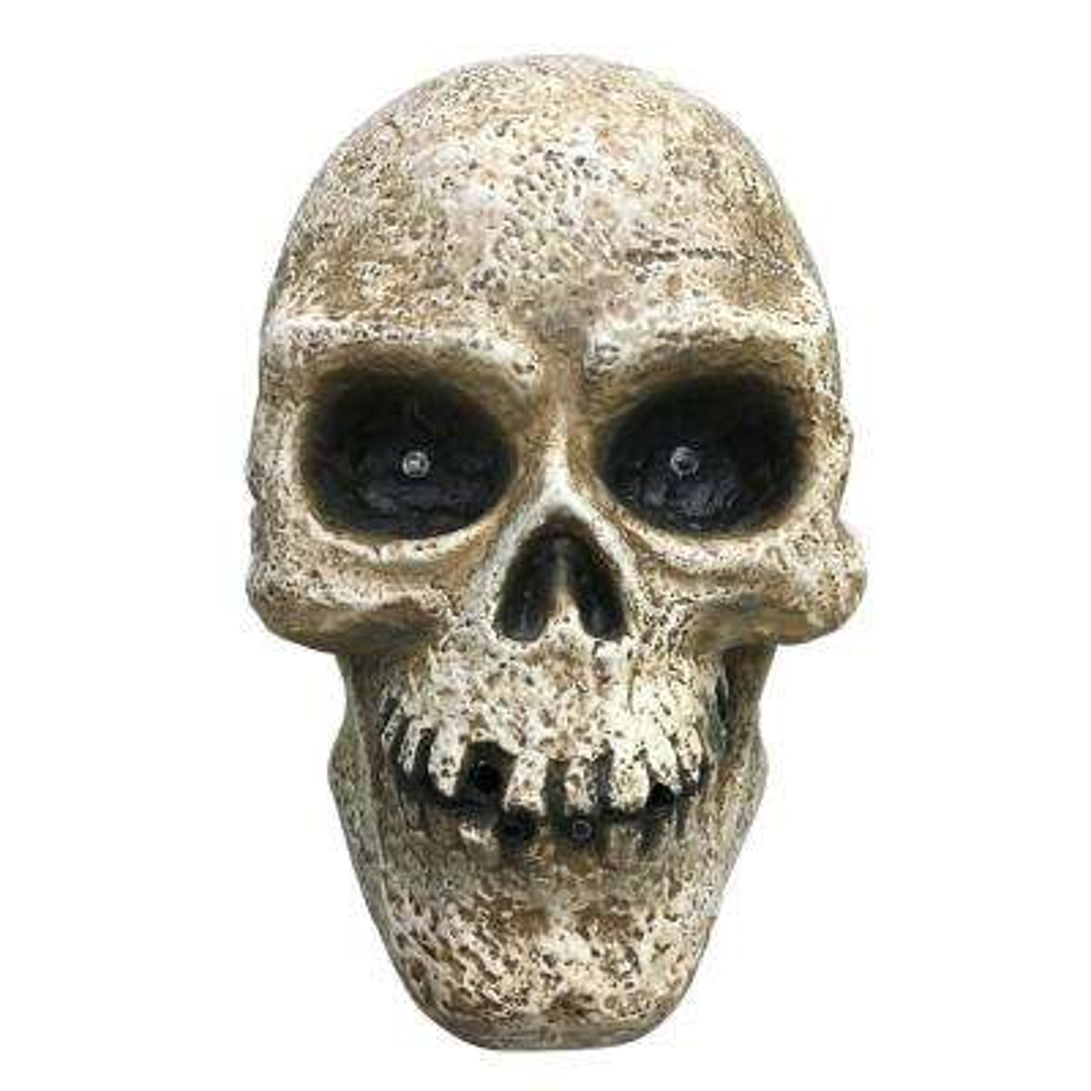 13.5 in. Halloween Led Halloween Fogging Skull