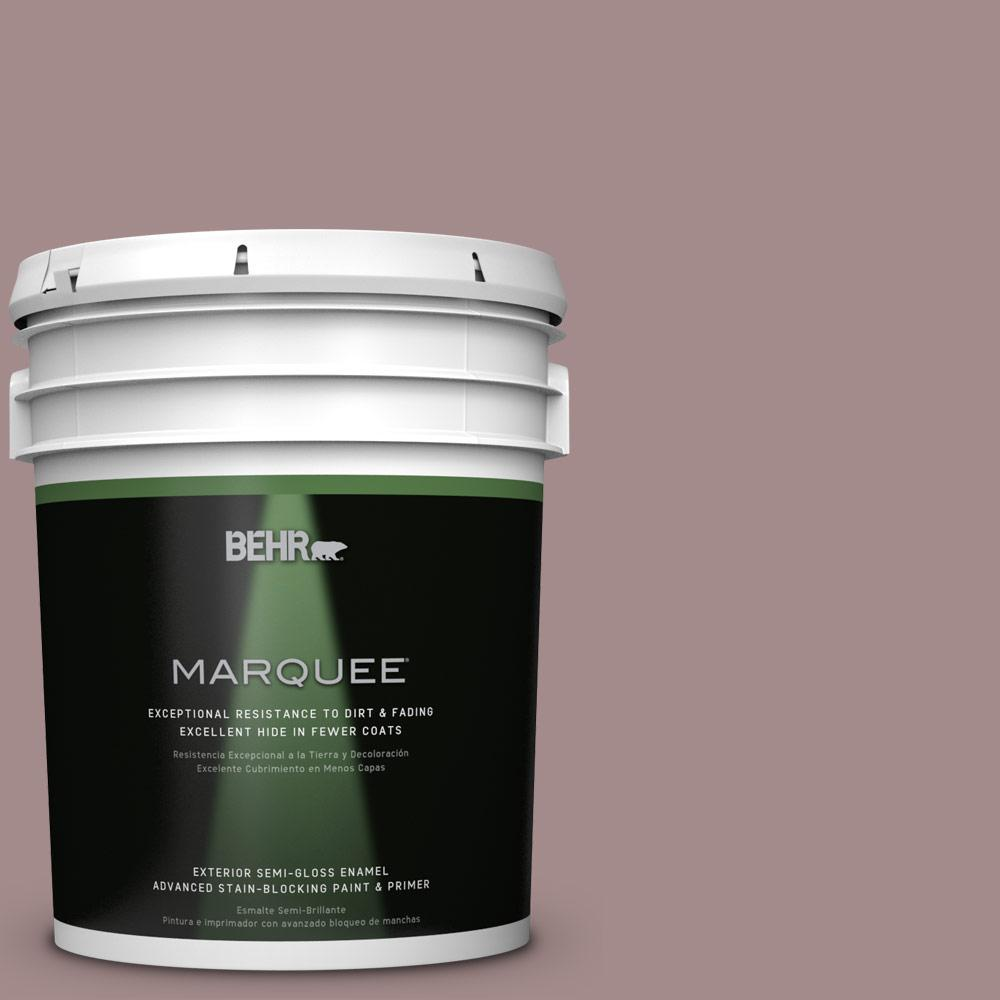 5-gal. #PPU17-15 Cameo Rose Semi-Gloss Enamel Exterior Paint