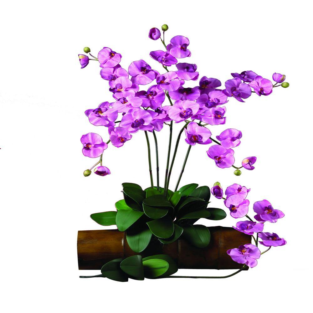 null 31.5 in. H Mauve Phalaenopsis Stem (Set of 12)