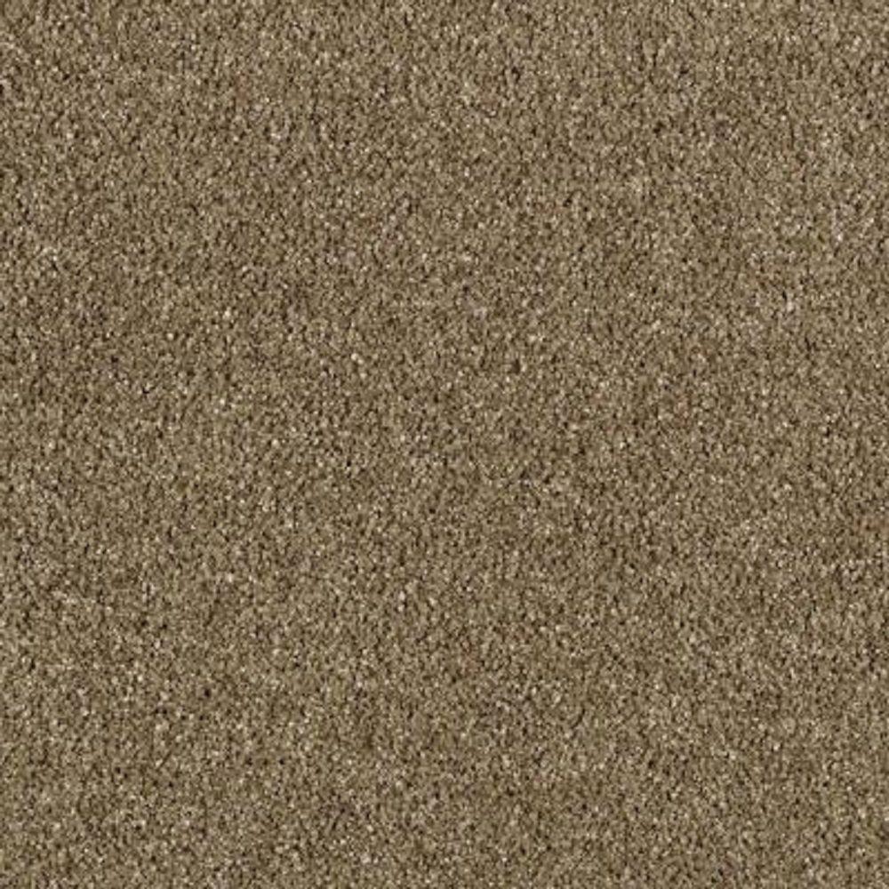 carpet sample pagliuca i color buckskin texture 8 in x 8 in
