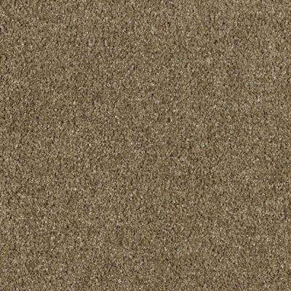 Carpet Sample - Pagliuca II - Color Buckskin Texture 8 in. x 8 in.