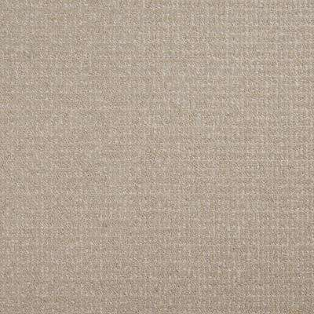 Havasu - Color Pasture Loop 12 ft. Carpet