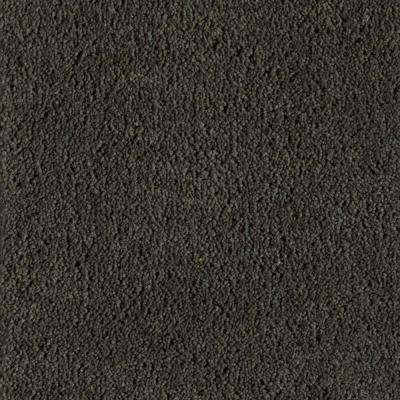 Astoria - Color Evergreen Texture 12 ft. Carpet