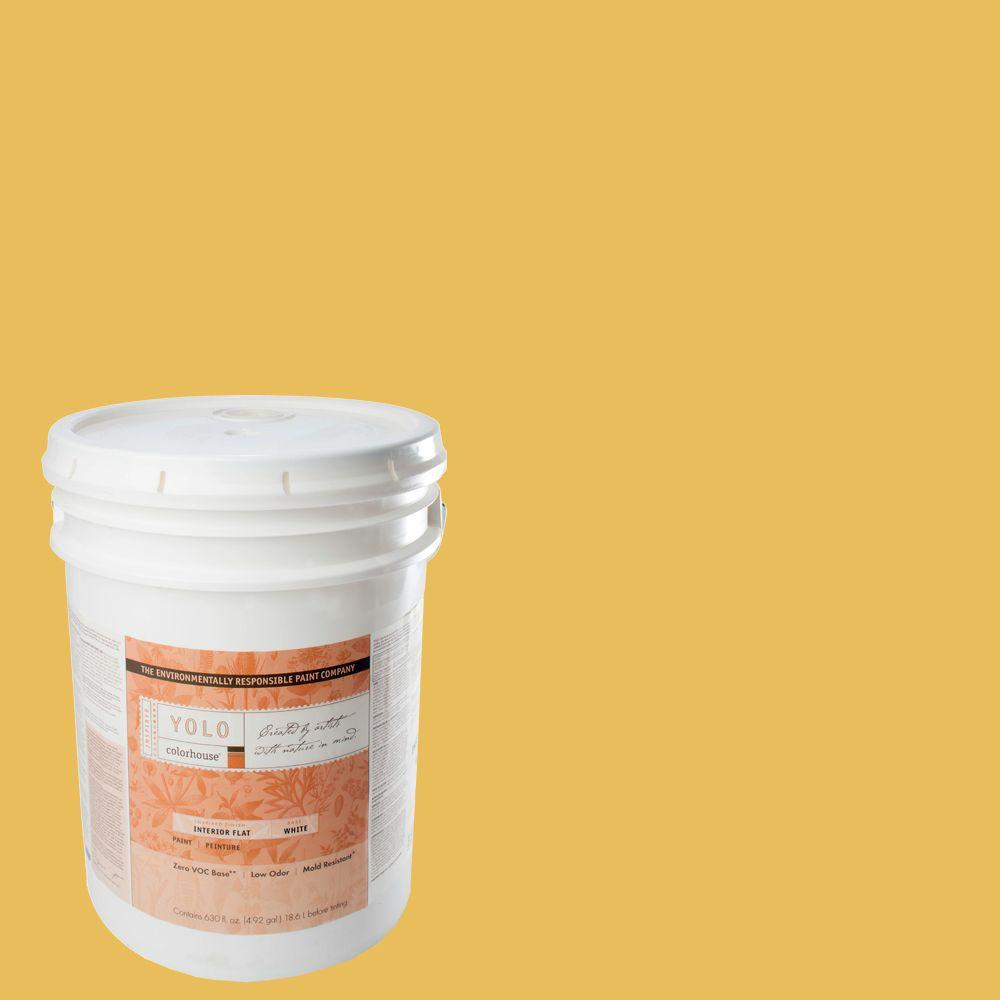 YOLO Colorhouse 5-gal. Aspire .05 Flat Interior Paint-DISCONTINUED
