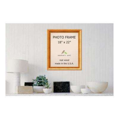Townhouse 18 in. x 22 in. Gold Picture Frame