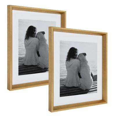 Calter 14 in. x 18 in. Matted to 11 in. x 14 in. Gold Picture Frame (Set of 2)
