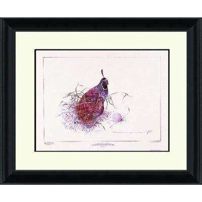 23.in x 29.in''Quail In The Rough'' By PTM Images Framed Printed Wall Art