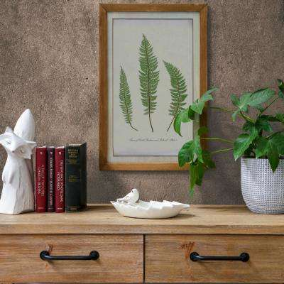 "23.75 in. x 16.75 in. ""1855 Ferns Of Great Britain And Ireland Plate 5 By T. Moore"" Printed Wall Art"