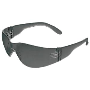 ERB Iprotect Safety Glasses Gray Temple/Gray Anti-Fog Lens by ERB