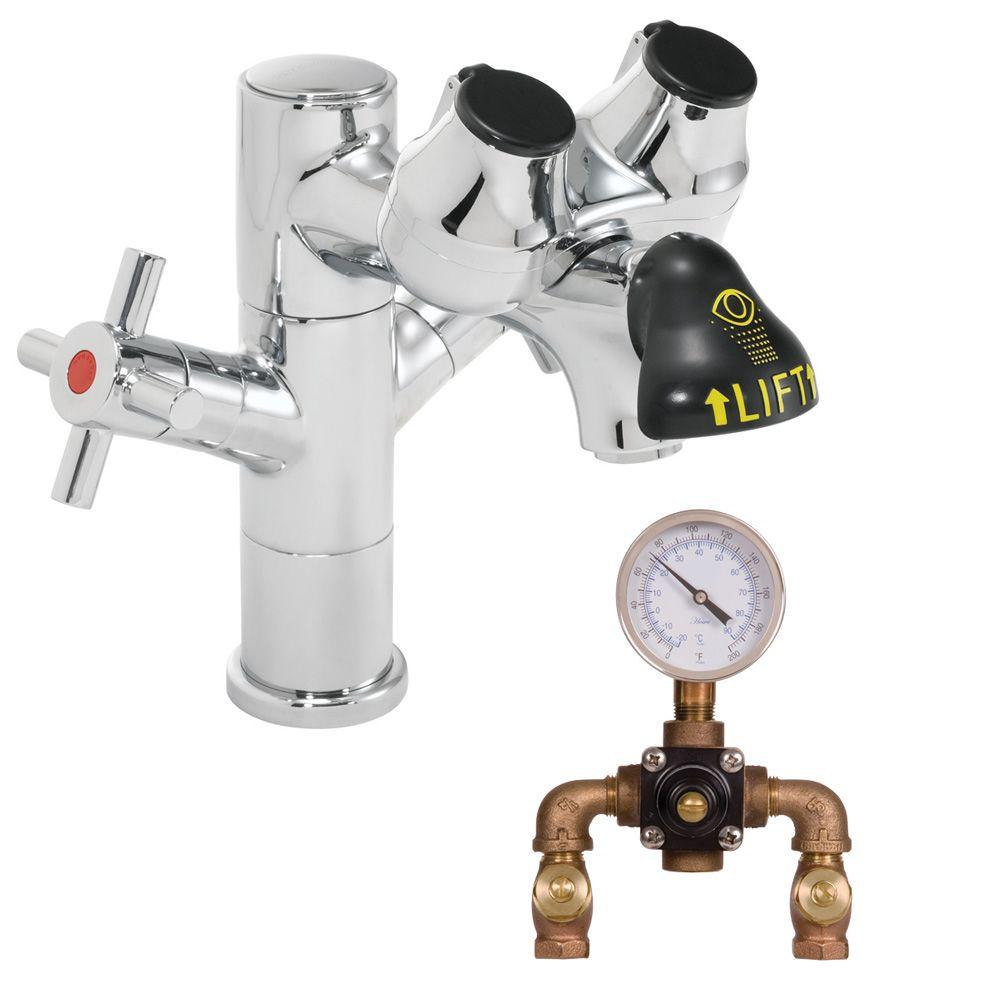 Eyesaver Laboratory Eye Wash with Faucet and Thermostatic Mixing Valve in