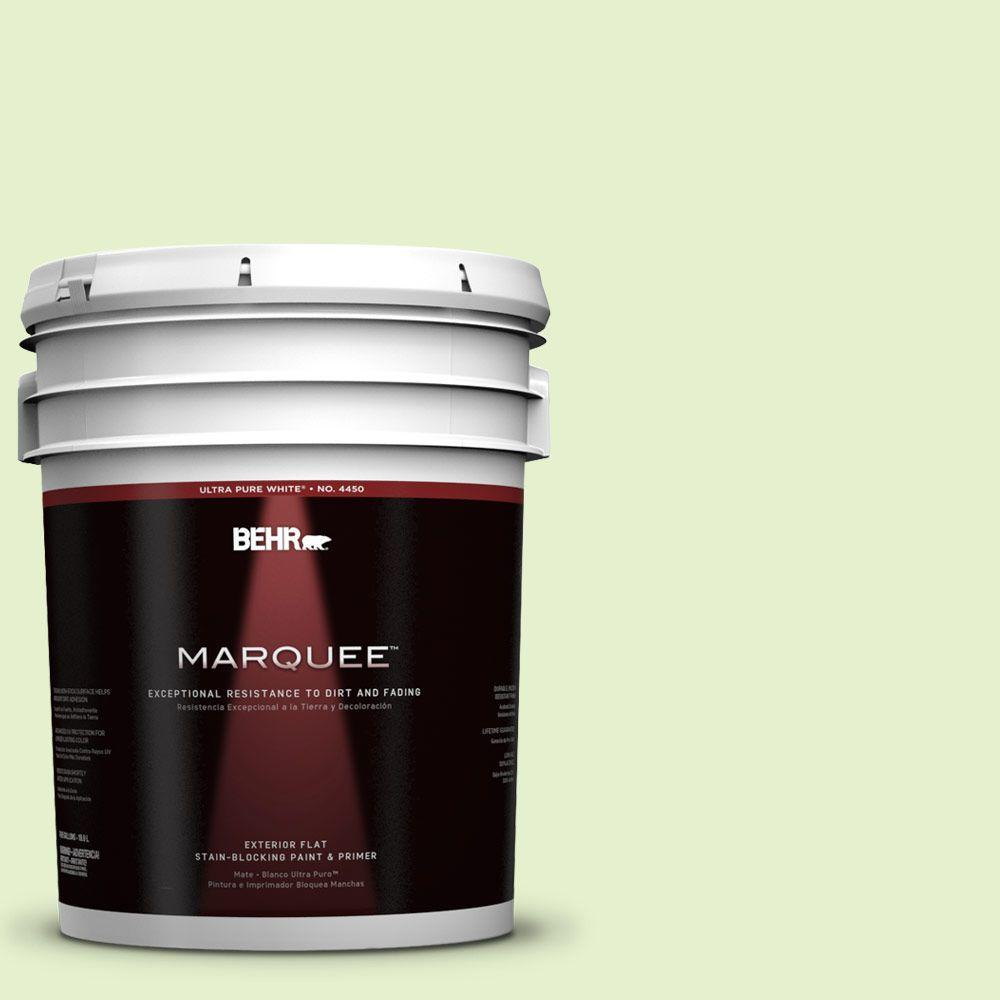 BEHR MARQUEE 5-gal. #420C-2 Water Sprout Flat Exterior Paint