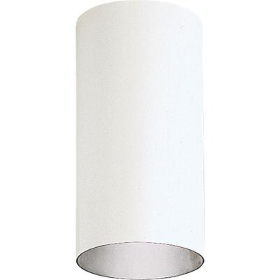 1-Light White Outdoor Flushmount