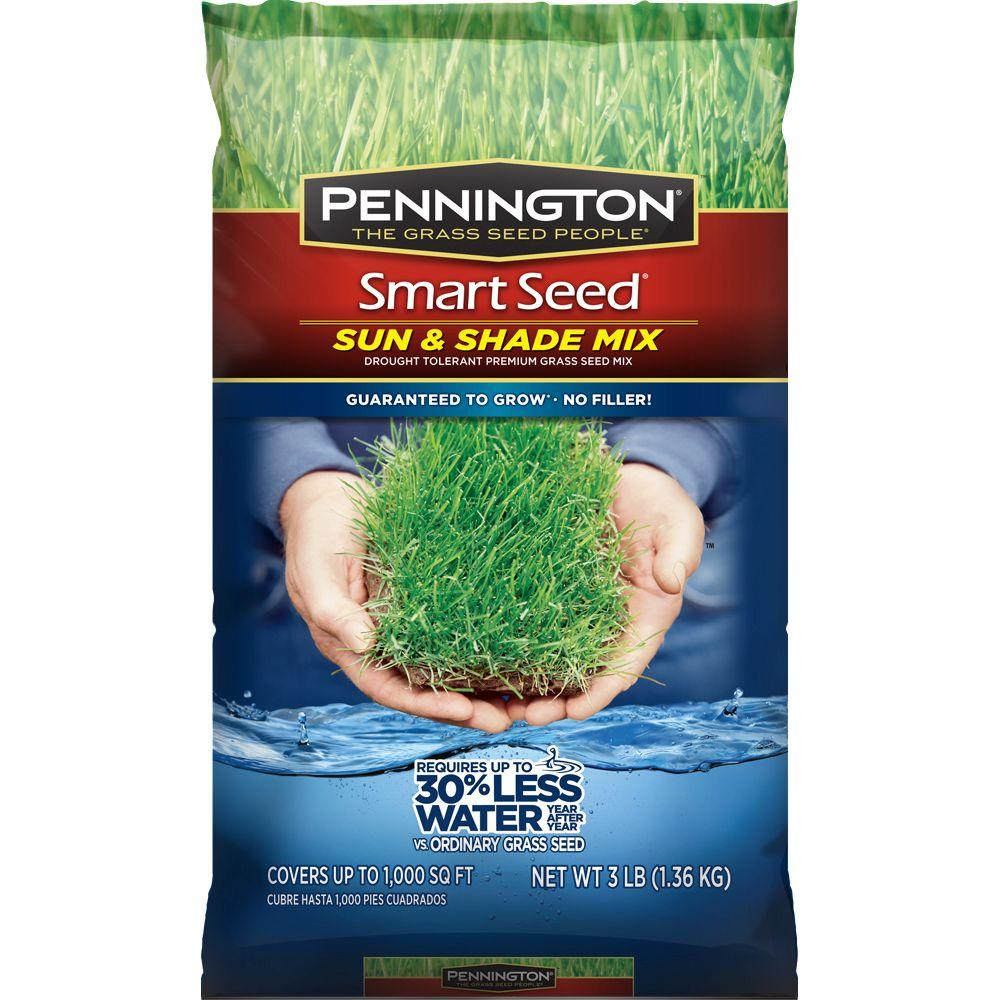 Pennington Smart Seed 3 lb. Sun and Shade Central Grass Seed