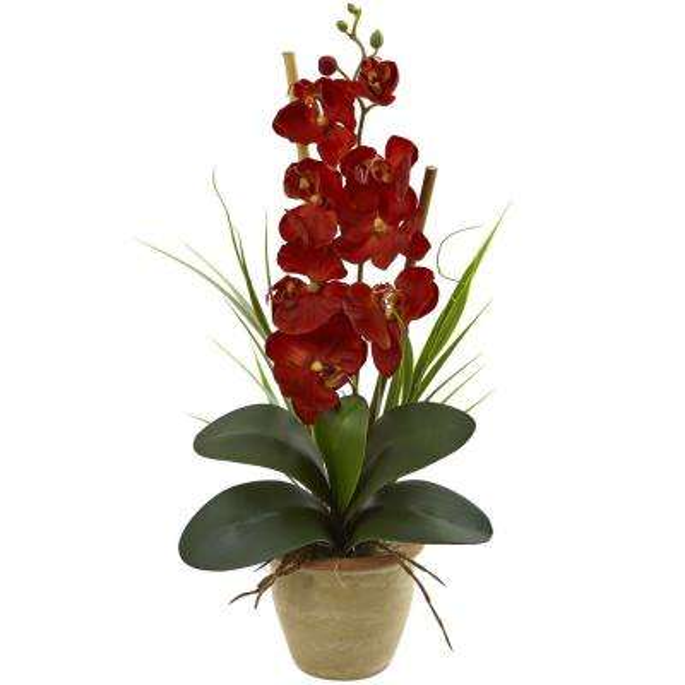 Phalaenopsis Orchid Harvest Silk Arrangement