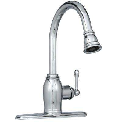 Metro Collection European Flair Single-Handle Pull-Out Sprayer Kitchen Faucet in Chrome