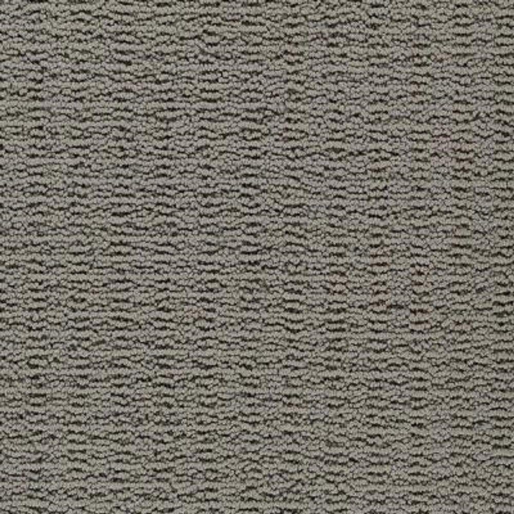 Carpet Sample - Plumlee - Color Magnetic Loop 8 in. x 8 in.