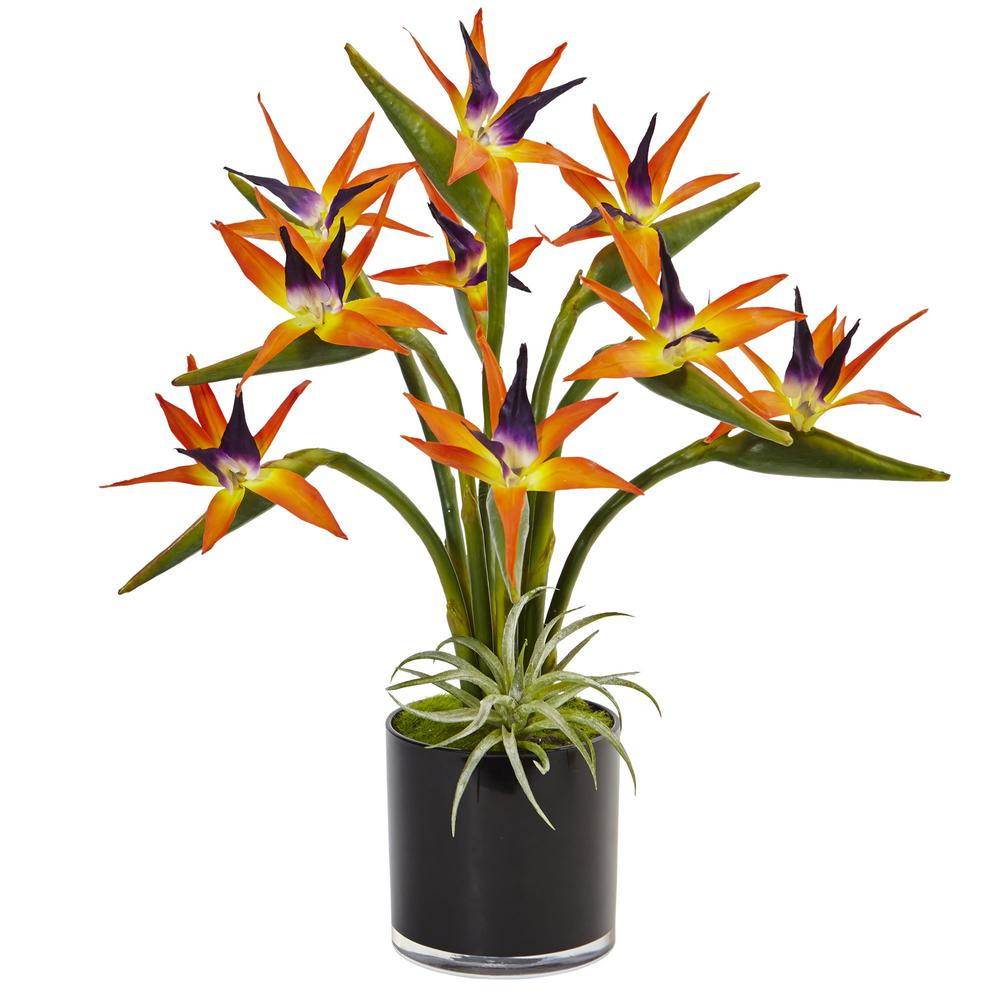 Nearly Natural Indoor Bird Of Paradise Silk Arrangement In Black