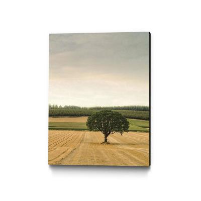 "30 in. x 40 in. ""Lone Tree in an Autumn Field"" by Don Schwartz Wall Art"