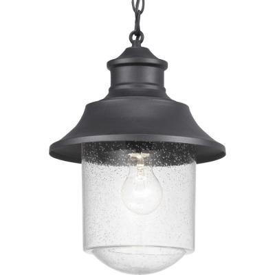 Lakelynn 1-Light Textured Black Outdoor Pendant Light with Clear Seeded Glass
