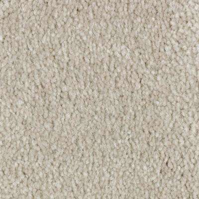 Carpet Sample - Best Wishes II - Color Canoe Texture 8 in. x 8 in.