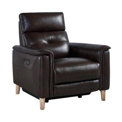 Gala Brown Wood and Dark Brown Genuine Leather Contemporary Chair
