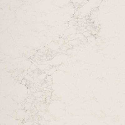 10 in. x 5 in. Quartz Countertop Sample in Calacatta Nuvo with Honed Finish