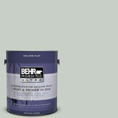 1 gal. No.UL210-9 Ceiling Tinted to Mild Mint Flat Interior Paint and Primer in One