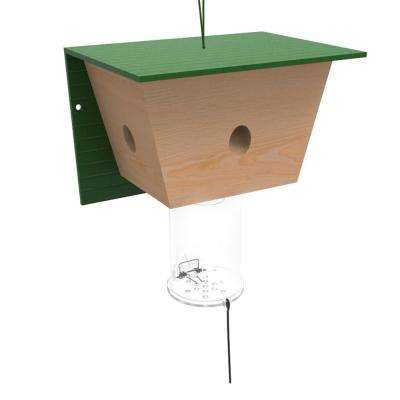 Best Carpenter Bee Trap