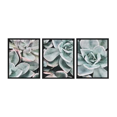 Sylvie Botanical Succulent Plants 1, 2, 3 24 in. x 18 in. by The Creative Bunch Studio Framed Canvas Wall Art