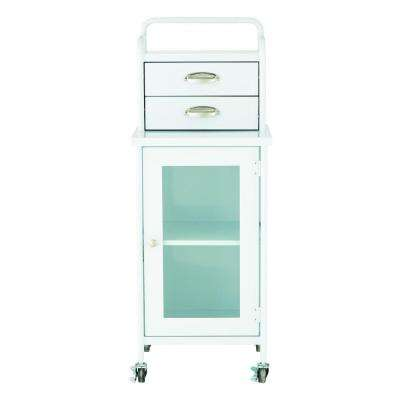 Steel 2-Drawer Cart in Glossy White
