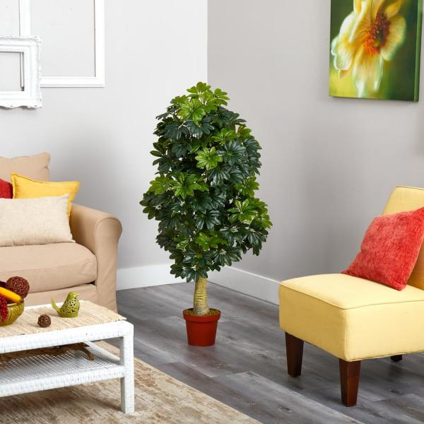 5 ft. Schefflera Artificial Tree (Real Touch)