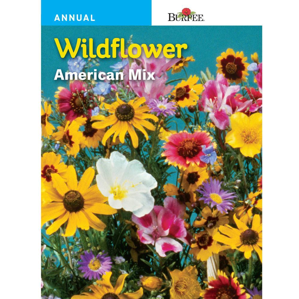 Bur Wildflower American Mix Seed